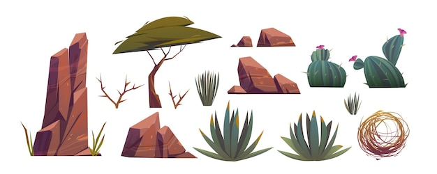 Tumbleweed, cactus et roches du désert de sable en afrique