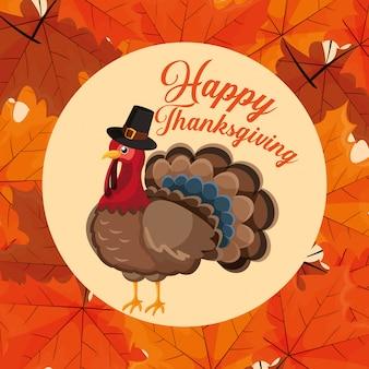 Turquie avec chapeau de pèlerin du jour de thanksgiving