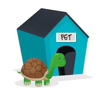 Turtle pet shop isolé icône