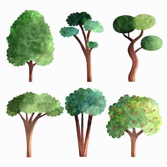 Type d'aquarelle d'arbres