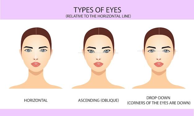 Types d'yeux par rapport à la ligne horizontale
