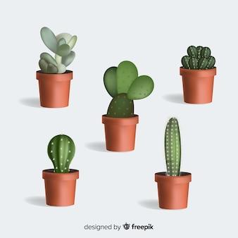 Usine de cactus dans un style réaliste