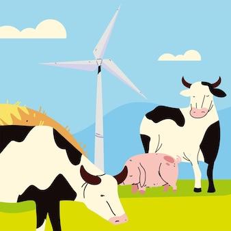 Vache et cochon de ferme