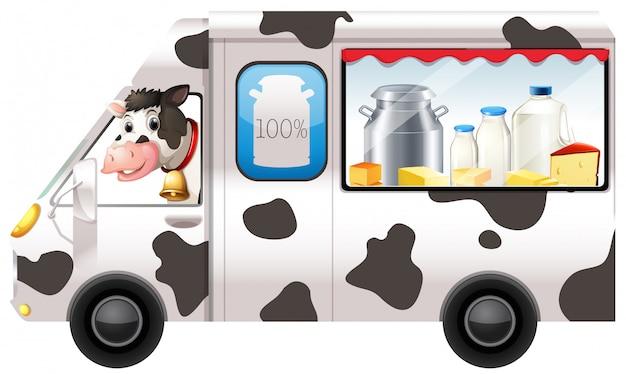 Vache laitière dans un camion