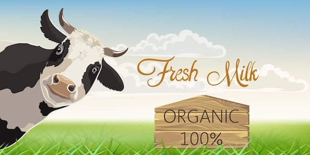 Une vache avec des taches noires avec un pré en arrière-plan. lait frais biologique.