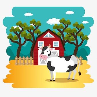 Vaches dans la ferme