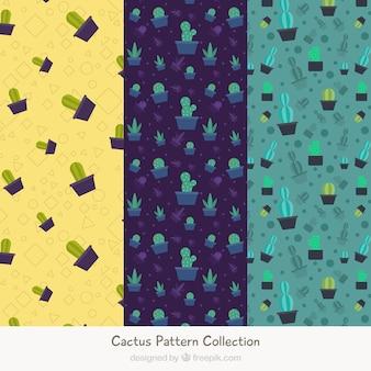 Variété amusante de motifs de cactus