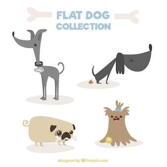 Variété de chiens fantastiques design plat