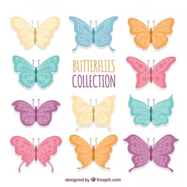 Variété de couleurs papillons