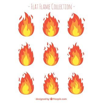 Variété de flammes