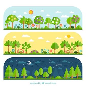Variété de la forêt