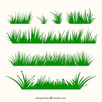 Variété des frontières de l'herbe verte dans le design plat