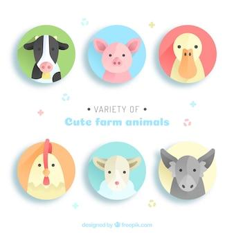 Variété de mignons animaux de ferme
