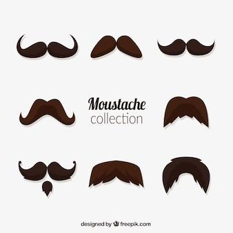 Variété de moustaches pour movember
