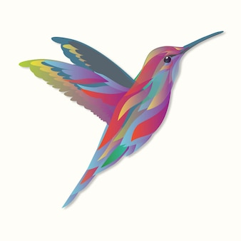 Vecteur animal colibris