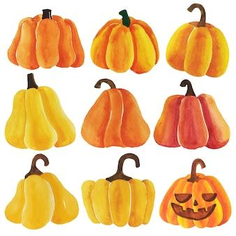 Vecteur de citrouilles halloween aquarelle.