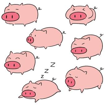 Vecteur de cochon
