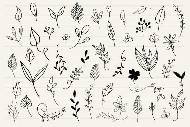 Vecteur de collecte de feuilles diverses doodle