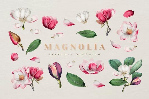 Vecteur de collection de design floral élégant
