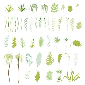 Vecteur de collection de fleurs et de feuilles exotiques tropicales. ensemble de feuilles de jungle dessinées à la main