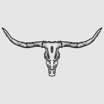 Vecteur de crâne de longhorn