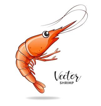 Vecteur de crevettes isolé sur fond blanc eps 10 vector illustration