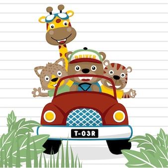 Vecteur de dessin animé animaux drôles sur la voiture rouge