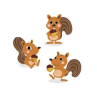 Vecteur de dessin animé mignon écureuil et noix