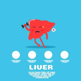 Vecteur de dessin animé mignon foie. concept d'organe humain
