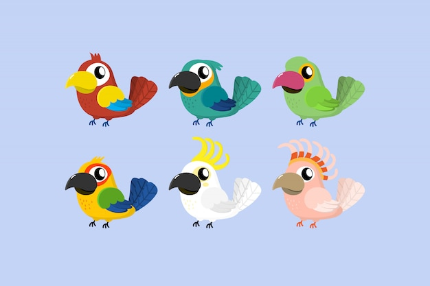 Vecteur de dessin animé mignon perroquet tropical.