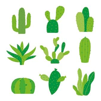 Vecteur de dessin animé de plantes de pot de fleur de pot de cactus