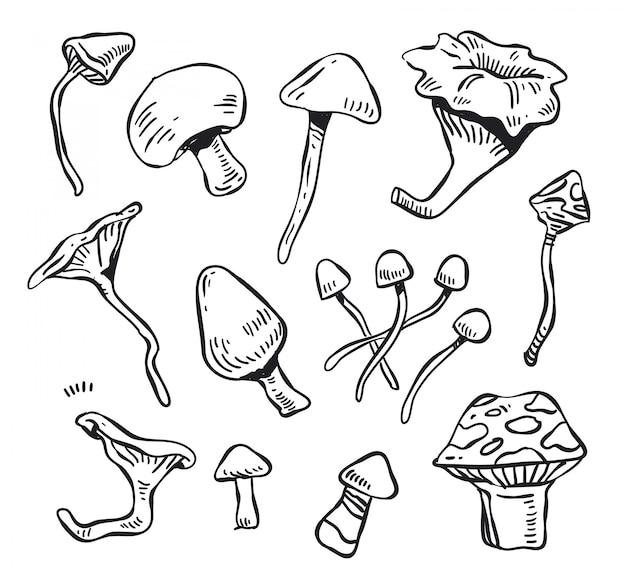 Vecteur de doodle aux champignons. doodle aux champignons
