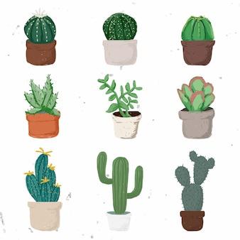 Vecteur d'élément de plante en pot mignon défini des plantes succulentes dans un style dessiné à la main
