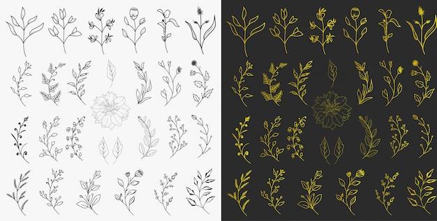 Vecteur d'éléments floraux dessinés à la main
