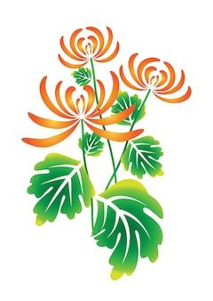 Vecteur de fleurs de chrysanthème aquarelle