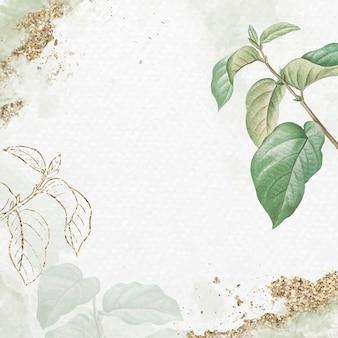 Vecteur de fond de feuille d'abricot de briançon