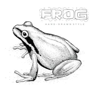 Vecteur de grenouille réaliste, illustration animale dessinée à la main