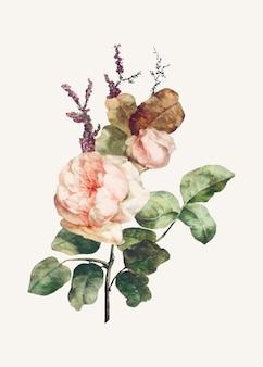 Vecteur d'illustration de bouquet de fleurs roses
