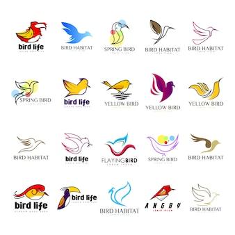 Vecteur de jeu de logo oiseau