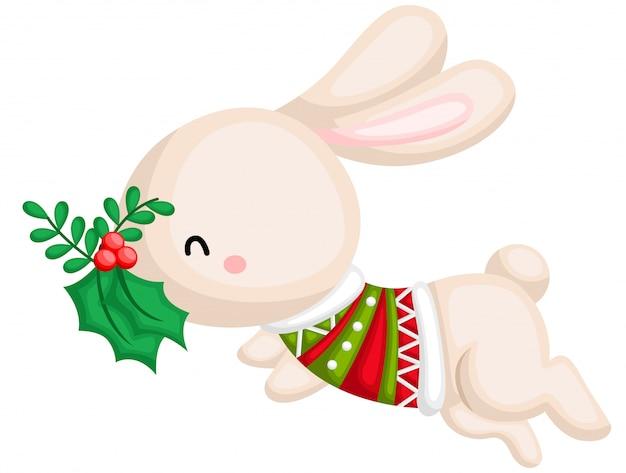 Un vecteur d'un lapin portant un pull