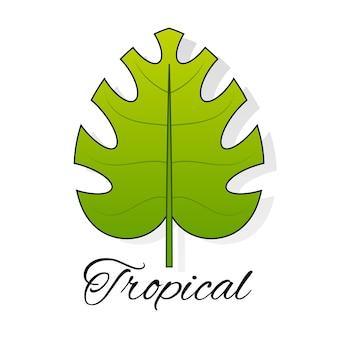 Vecteur de logo de feuille tropicale pour la conception et l'impression de t-shirts de cartes postales.