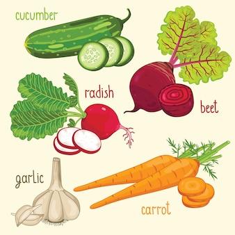 Vecteur de mélange de légumes