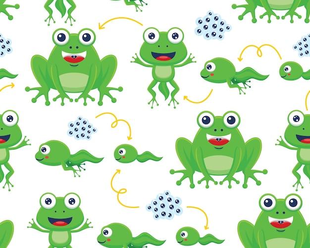 Vecteur de modèle sans couture de dessin animé drôle de cycle de vie de grenouille