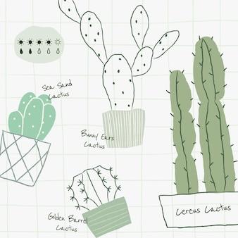 Vecteur de modèle de tableau d'arrosage des plantes de cactus