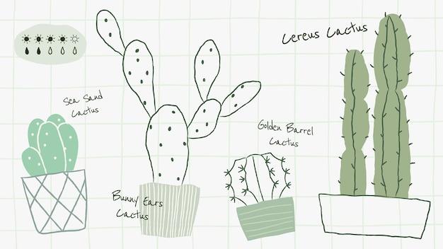 Vecteur de modèle de tableau d'arrosage pour plantes d'intérieur cactus