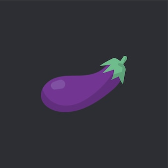 Vecteur de nourriture aubergine biologique crue