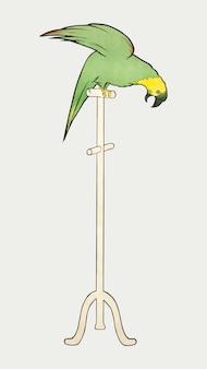 Vecteur de perroquet sur un perchoir debout, remixé à partir d'œuvres d'art de leonetto cappiello