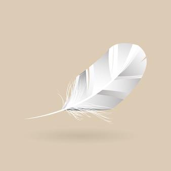 Vecteur de plumes