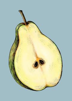Vecteur de poire fraîchement coupée mûre