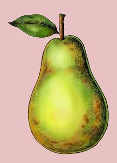 Vecteur de poire verte fraîche mûre